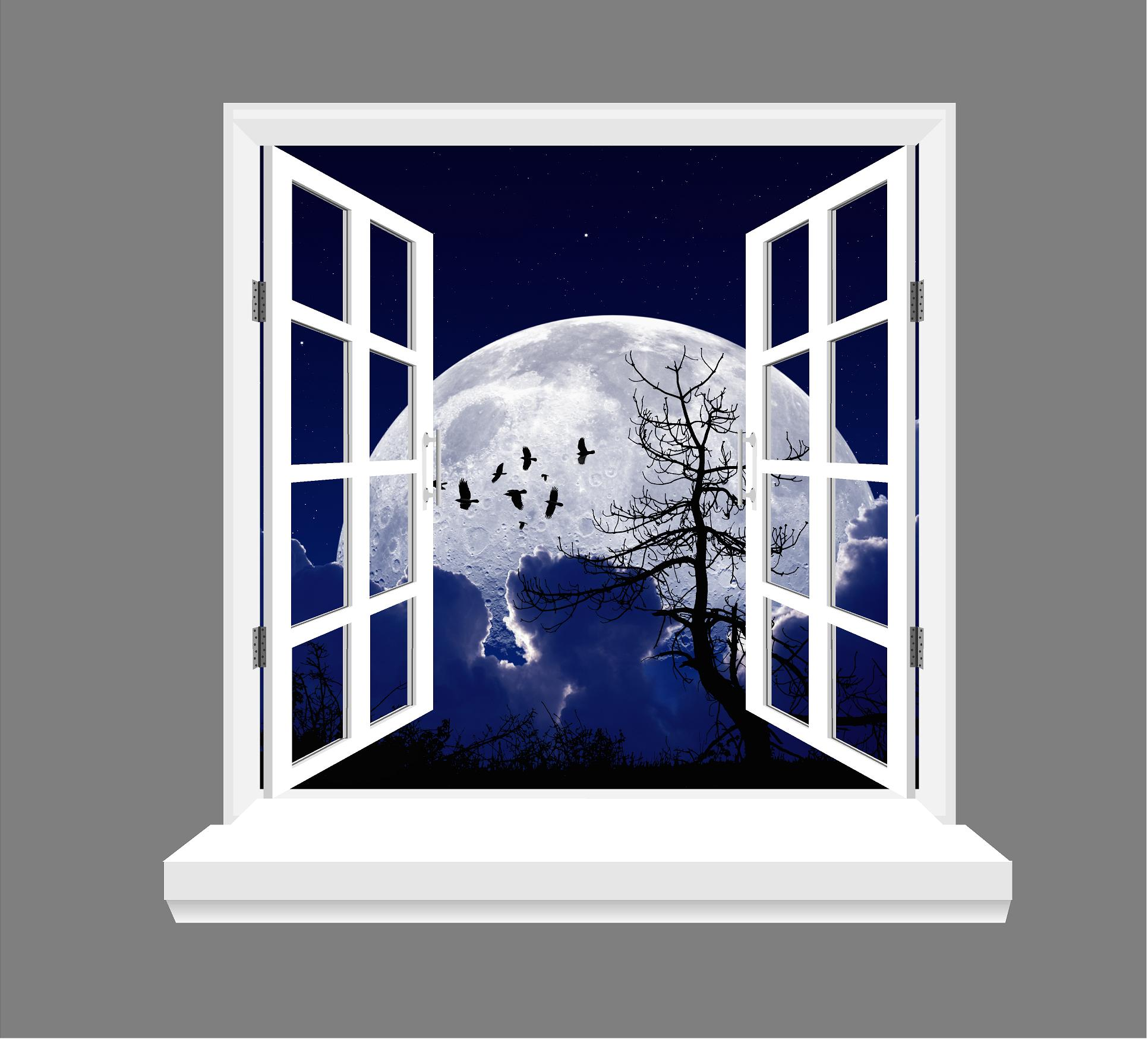 Moon And Birds 3d Window View Wall Art Sticker